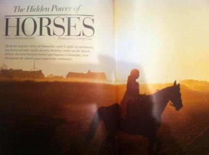 hidden power of horses