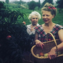 My great-grandmother, Oma, my grandmother,Omi, gathering farm peaches n the '40s.