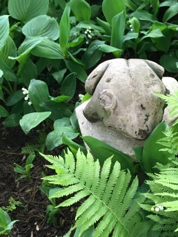 An old stone frog in the shade bed.