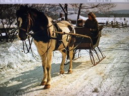Mom, and my brother Rob, in his coon skin cap, out for a sleigh ride on the farm in 1955.