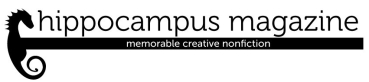 Hippocampus magazine logo